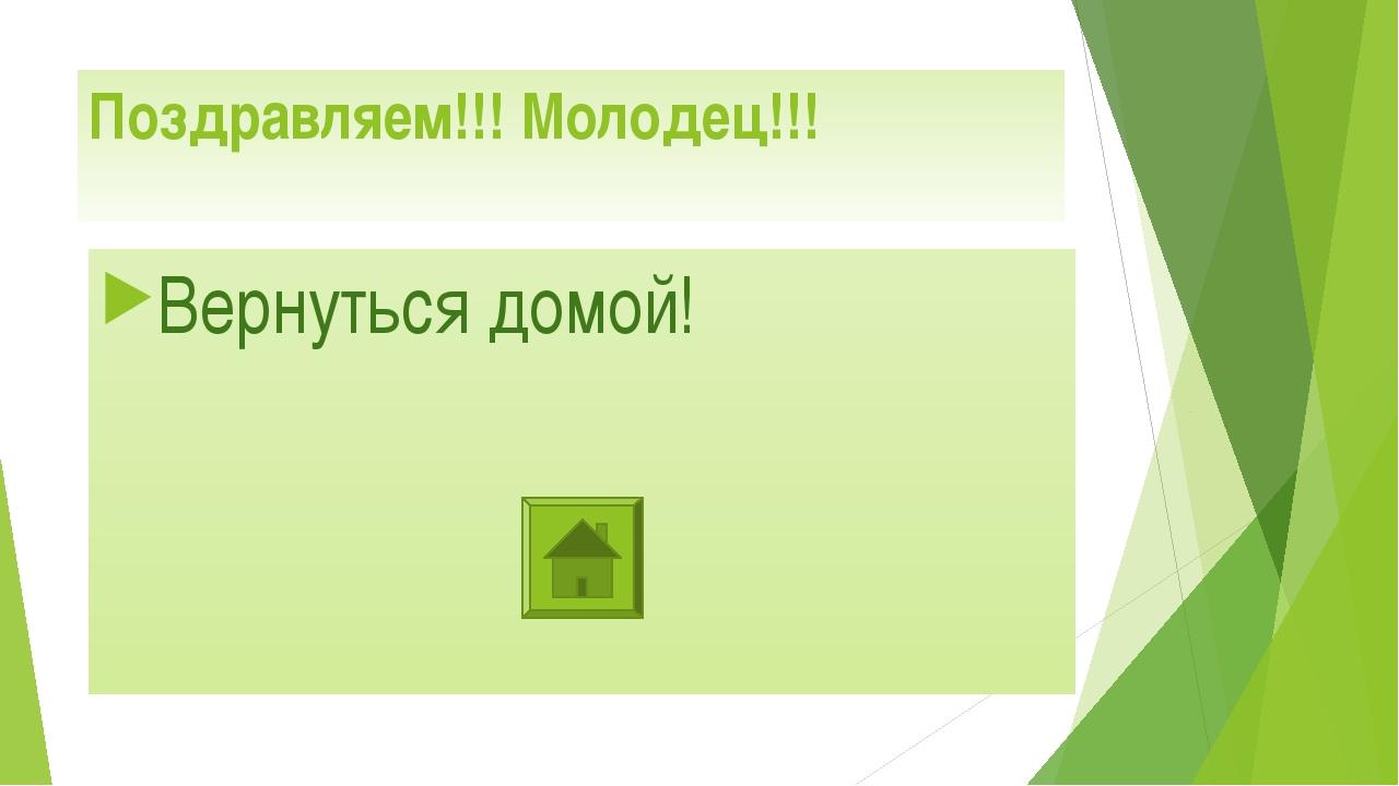 Поздравляем!!! Молодец!!! Вернуться домой!