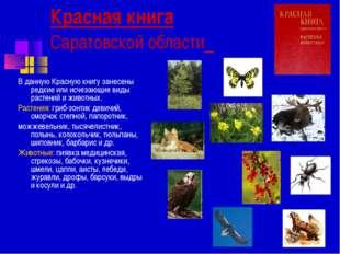 Красная книга Саратовской области В данную Красную книгу занесены редкие или