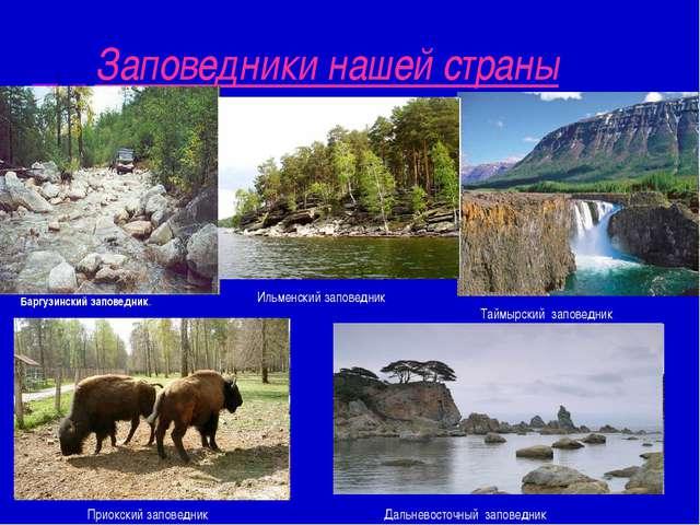 Заповедники нашей страны Баргузинский заповедник. Таймырский заповедник Ильме...