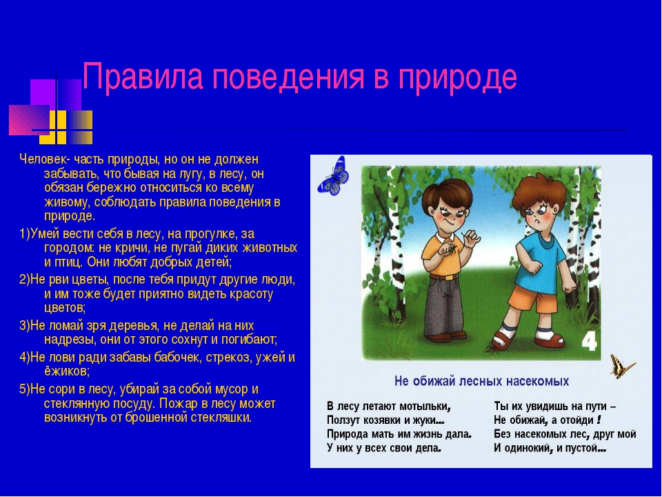 Правила поведения в природе Человек- часть природы, но он не должен забывать,...