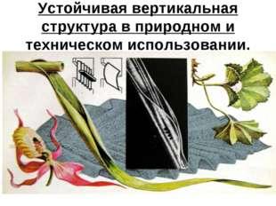 Стволовая архитектура. Устойчивая вертикальная структура в природном и технич