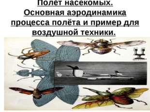 Полёт насекомых. Основная аэродинамика процесса полёта и пример для воздушной