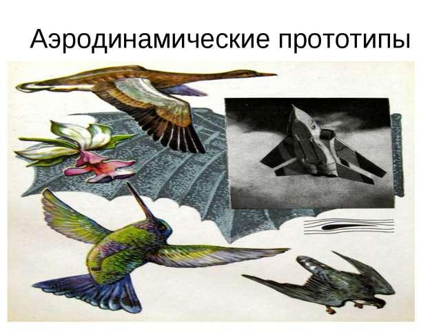 Аэродинамические прототипы