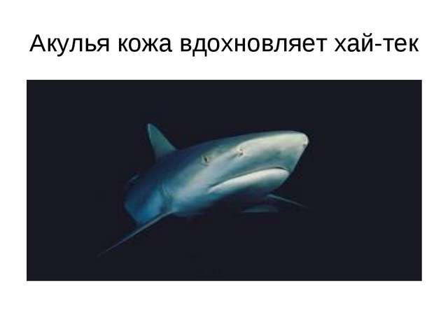 Акулья кожа вдохновляет хай-тек