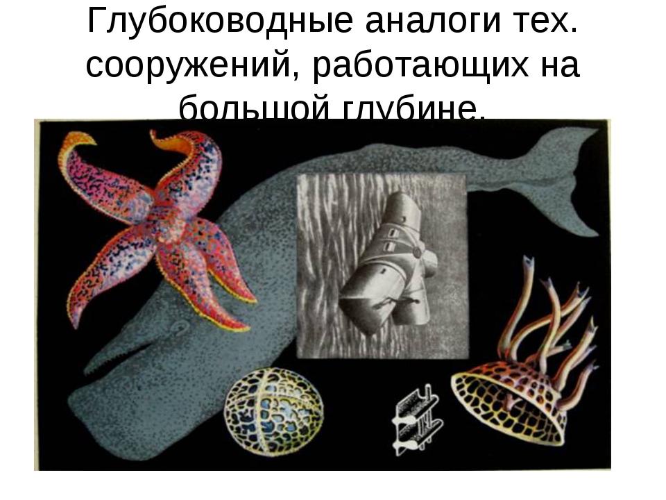Глубоководные аналоги тех. сооружений, работающих на большой глубине.