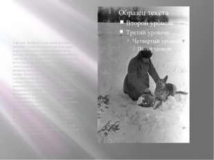 Участник Великой Отечественной войны тюменец Сергей Соловьев в одной из наших