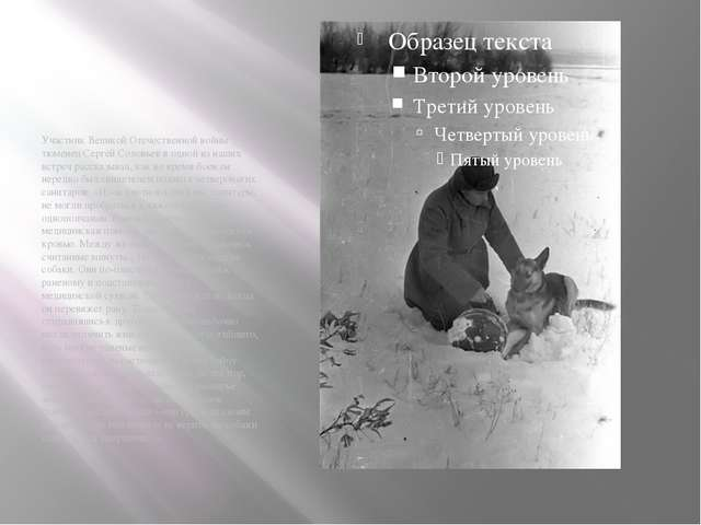 Участник Великой Отечественной войны тюменец Сергей Соловьев в одной из наших...