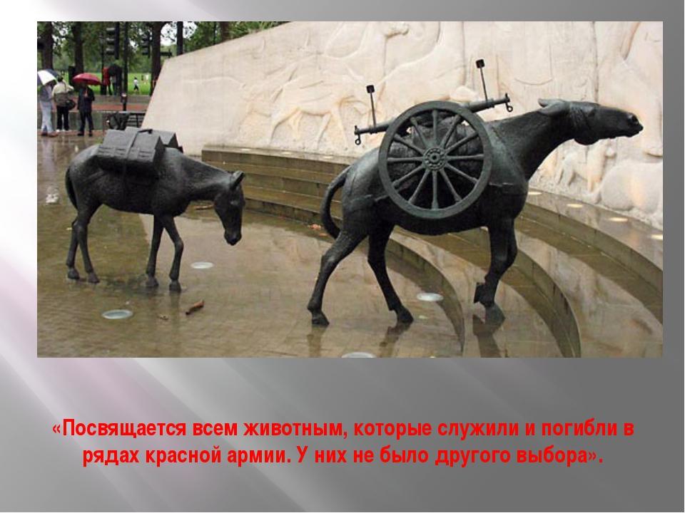 «Посвящается всем животным, которые служили и погибли в рядах красной армии....