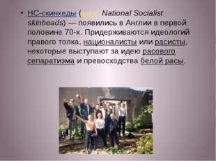 НС-скинхеды (англ.National Socialist skinheads)— появились в Англии в перво