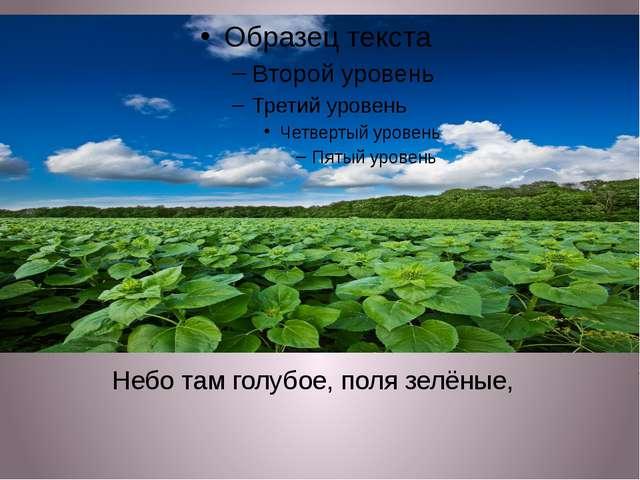 Небо там голубое, поля зелёные,