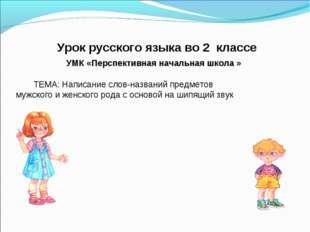 Урок русского языка во 2 классе УМК «Перспективная начальная школа » ТЕМА: Н