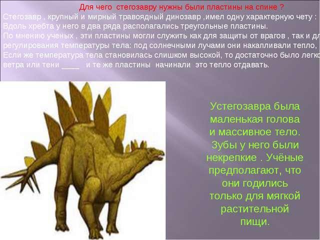 Для чего стегозавру нужны были пластины на спине ? Стегозавр , крупный и мир...