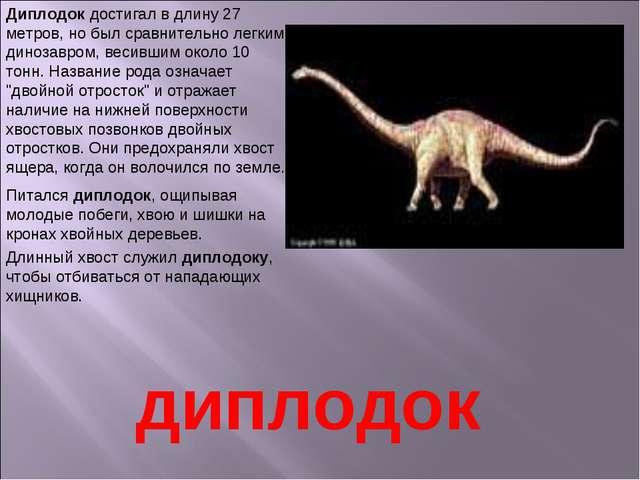 Диплодок достигал в длину 27 метров, но был сравнительно легким динозавром, в...
