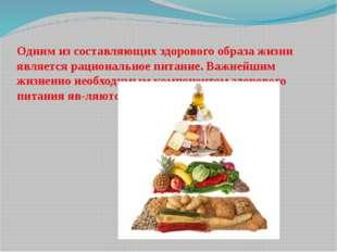 Одним из составляющих здорового образа жизни являетсярациональное питание. В