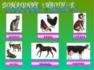 собака куры кошка козы лошадь корова