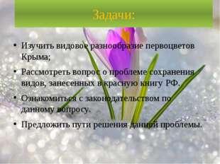 Задачи: Изучить видовое разнообразие первоцветов Крыма; Рассмотреть вопрос о