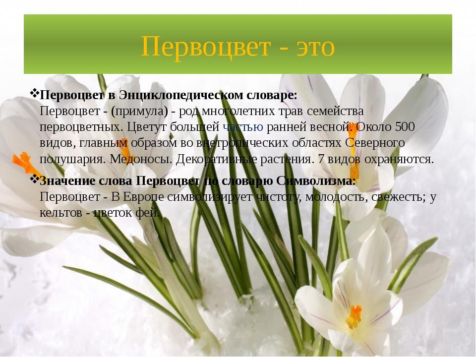 Первоцвет - это Первоцвет в Энциклопедическом словаре: Первоцвет - (примула)...
