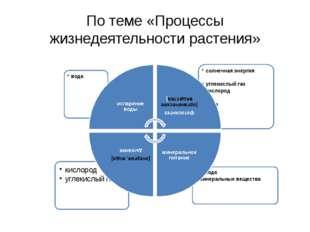 По теме «Процессы жизнедеятельности растения»