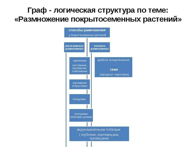 Граф - логическая структура по теме: «Размножение покрытосеменных растений»