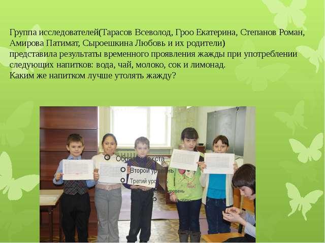 Группа исследователей(Тарасов Всеволод, Гроо Екатерина, Степанов Роман, Амир...