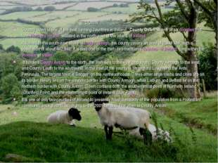 DOWN Country down is one of the best farming countries in Ireland . County D