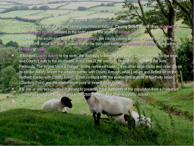 DOWN Country down is one of the best farming countries in Ireland . County D...