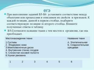 егэ При выполнении заданий В5-В6 установите соответствие между объектами или