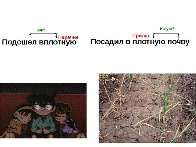 Подошел вплотную Посадил в плотную почву Как? Наречие Прилаг. Какую?