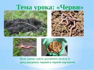 Цель урока: уметь различать пользу и вред дождевых червей и червей-паразитов