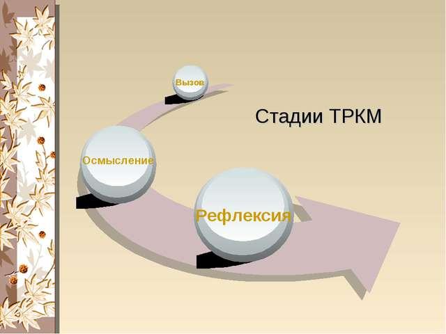 Вызов Осмысление Рефлексия Стадии ТРКМ