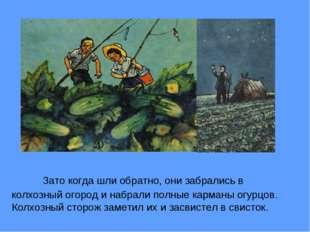 Зато когда шли обратно, они забрались в колхозный огород и набрали полные к