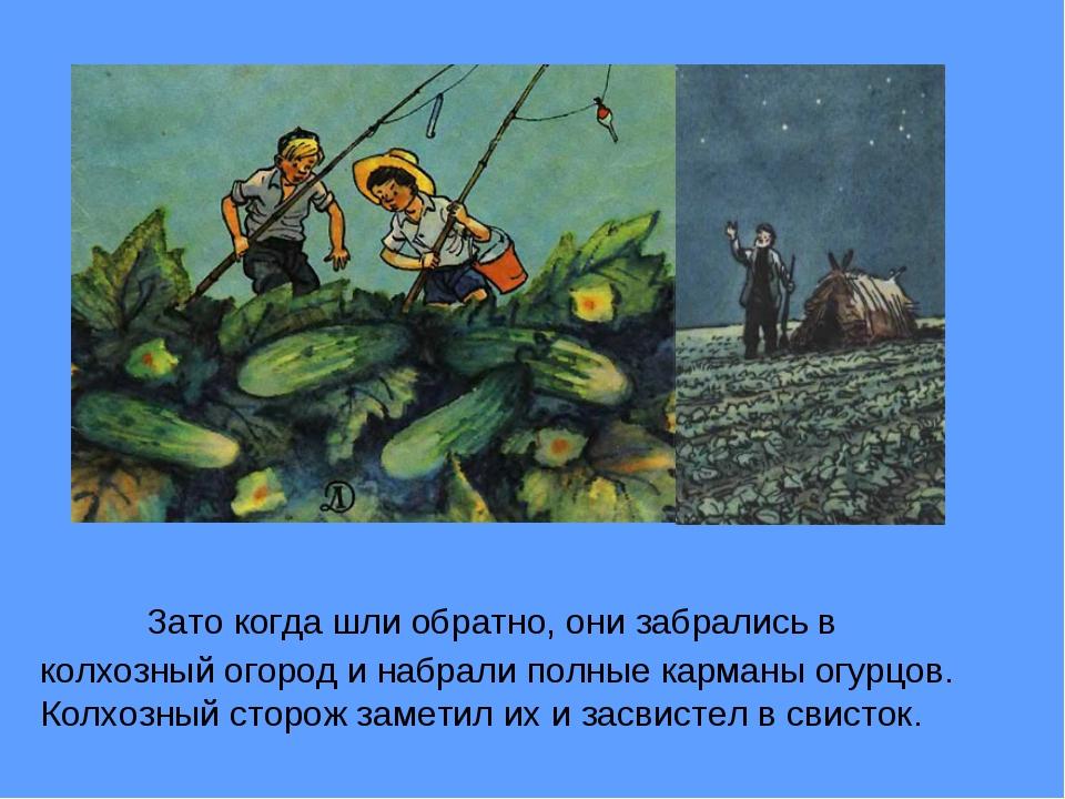 Зато когда шли обратно, они забрались в колхозный огород и набрали полные к...