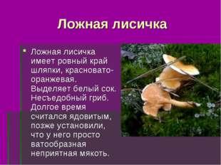 Ложная лисичка Ложная лисичка имеет ровный край шляпки, красновато-оранжевая.