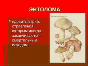 ЭНТОЛОМА ядовитый гриб, отравления которым иногда заканчиваются смертельным и
