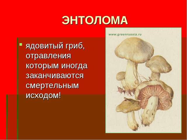 ЭНТОЛОМА ядовитый гриб, отравления которым иногда заканчиваются смертельным и...