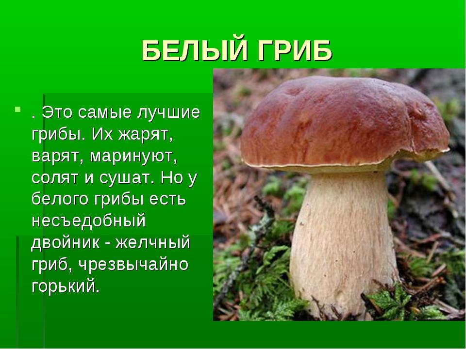БЕЛЫЙ ГРИБ . Это самые лучшие грибы. Их жарят, варят, маринуют, солят и сушат...