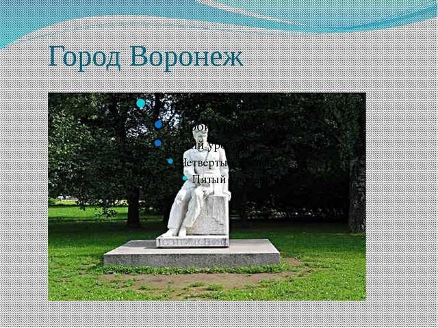 Город Воронеж