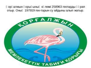 Қорғалжын қорығының көлемі 258963 гектарды құрап отыр. Оның 197919 гектарын