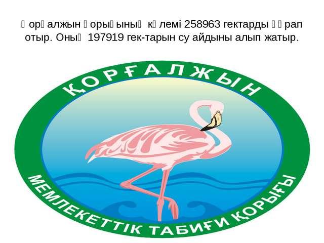 Қорғалжын қорығының көлемі 258963 гектарды құрап отыр. Оның 197919 гектарын...