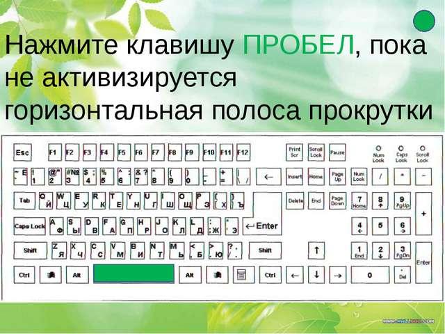 Нажмите клавишу ПРОБЕЛ, пока не активизируется горизонтальная полоса прокрутки
