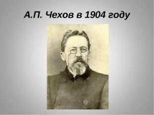 А.П. Чехов в 1904 году