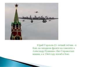 Юрий Горохов-22- летний летчик - в боях на западном фронте на самолете « Алек