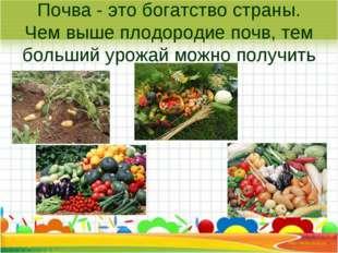 Почва - это богатство страны. Чем выше плодородие почв, тем больший урожай мо