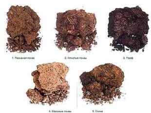 Используя текст учебника стр.126-127 Составить схему механический состав почв