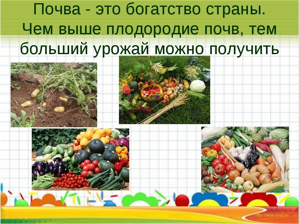 Почва - это богатство страны. Чем выше плодородие почв, тем больший урожай мо...