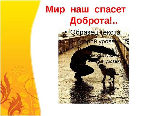 Мир наш спасет Доброта!..