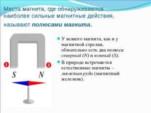 Места магнита, где обнаруживаются наиболее сильные магнитные действия, называ