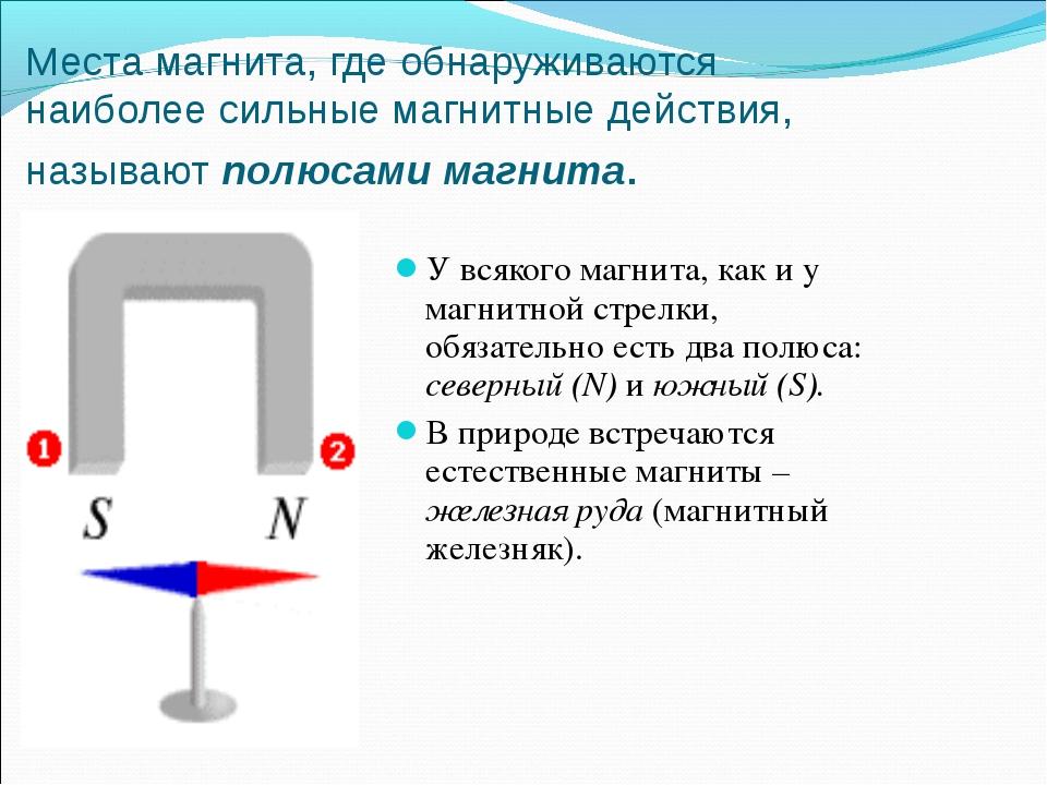 Места магнита, где обнаруживаются наиболее сильные магнитные действия, называ...
