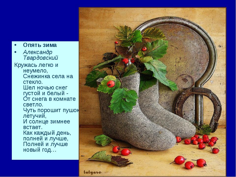 Опять зима Александр Твардовский Кружась легко и неумело, Снежинка села на ст...