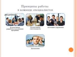 Принципы работы в команде специалистов